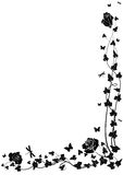 Roses and ivy. Vector background with roses and ivy in black and white colors Royalty Free Stock Photo