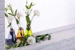 Roses japonaises dans de petits vases multicolores sur le rebord de fenêtre Images stock