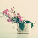 Roses in a jar Royalty Free Stock Photography
