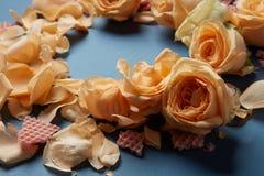 Roses jaunes pour la décoration Photos libres de droits