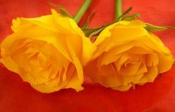 Roses jaunes sur la flamme b orange Photos stock