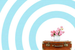 Roses in jug on blue stripes background. Stock Photos