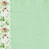 Roses and Lace Green Scrapbook Page Stock Images