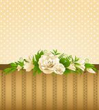 Roses with lace ornaments Royalty Free Stock Image
