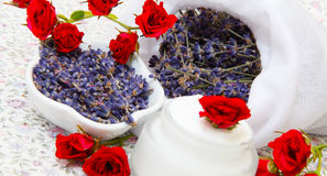 Roses and lavender royalty free stock images