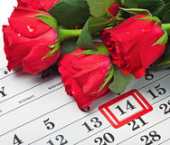 Roses lay on the calendar with the date of February 14 Valentine Stock Photo
