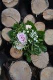 Roses - le bouquet se trouve entre le bois de chauffage Images stock