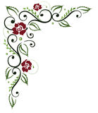 Roses, leaf, floral Stock Images