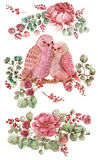 Roses, leaves and bird. Watercolor illustration over white backg Stock Photos