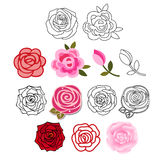 Roses with leaves set Royalty Free Stock Photos