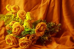 The orange rose, the beauty of human. Stock Photo
