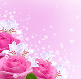 Roses, lilies and bubbles Royalty Free Stock Image