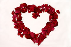Roses Love. A heart made of real red roses petals. I will be very happy if you let me know when you use this image in your project Stock Photography