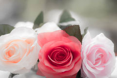 Roses made of fabric Stock Image