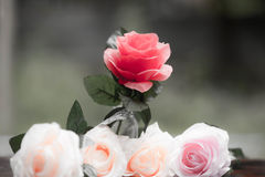 Roses made of fabric Stock Photography