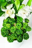 Roses made from pandanus leaves Stock Images