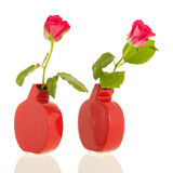 Roses in modern vases Royalty Free Stock Images