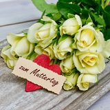 Roses for mothers day Stock Images