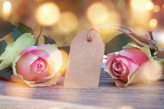 Roses for a mothers day message Stock Photos