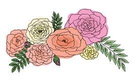Roses multicolores sur le fond blanc Photo libre de droits