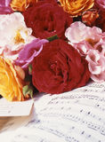 Roses on music page. Yellow,, white, orange, pink and red roses on music page Stock Photography