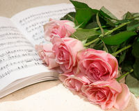 Roses and music Stock Image