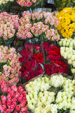 Roses offered at the night flower market royalty free stock image