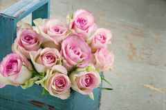 Roses in an old blue wooden basket Royalty Free Stock Photos