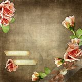Roses and old paper on a brown grunge background Royalty Free Stock Images
