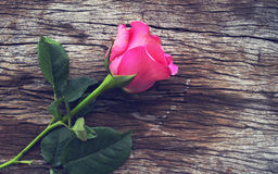 Roses on old wooden board, Valentines Day background, wedding da Stock Photo
