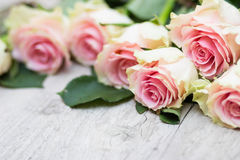 Roses On A Wooden Background Royalty Free Stock Photo