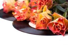 Roses oranges avec de vieux enregistrements au-dessus de blanc Photos libres de droits