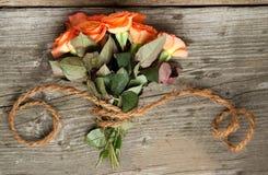 Roses oranges avec le cordon Photographie stock