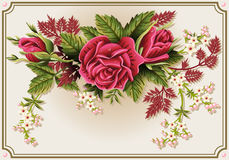 Roses Ornament on Vintage Frame Royalty Free Stock Photo