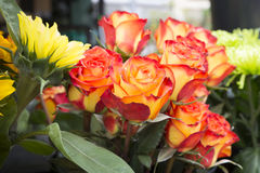 Roses and other flowers for sale Stock Photos