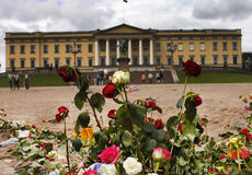 Roses outside the  norwegian castle Royalty Free Stock Image