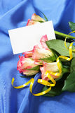 Roses over blue silk background Stock Photos