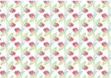 Roses pattern ,red rose with green leave hand drawing ,vector illustration Royalty Free Stock Photo
