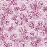 Floral pattern seamless Royalty Free Stock Photos