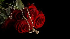 Roses and pearls. Necklace and roses. Islated on black. Copyspace for text Royalty Free Stock Image