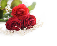 Roses and pearls Royalty Free Stock Photography