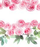Roses peintes par aquarelle Images libres de droits