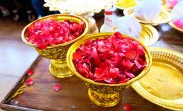 Roses petal Royalty Free Stock Image