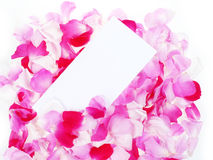 Roses petals and empty card Stock Photos