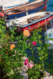 Roses on the pier Royalty Free Stock Photo