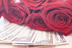 Roses on the pile of dollar notes Royalty Free Stock Photos