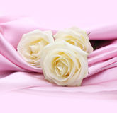 Roses on pink silk background Stock Photography