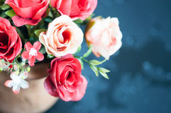 Roses in a pot Stock Image