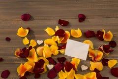 Roses pour la Saint-Valentin Photo libre de droits