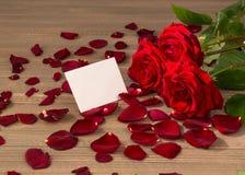 Roses pour la Saint-Valentin Images libres de droits